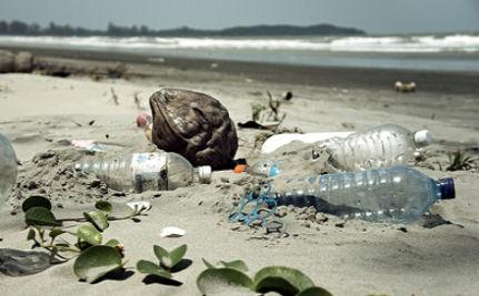 Plastic Pollution, Not Marine Debris!