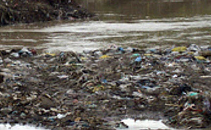 All it Takes is a Nickel: Plastic Bags and Earth Week