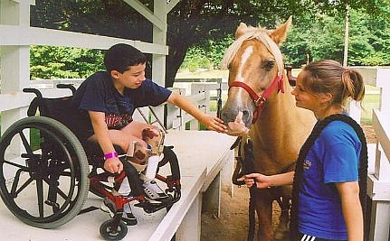 The Inspiring Story of Easter Seals: More Than Just a Pretty Lily