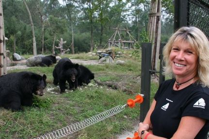 356 Bears Find Healing & Love After Decades of Torture (VIDEO)