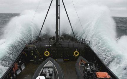 Sea Shepherd to Defend Bluefin Tuna in Libyan Waters