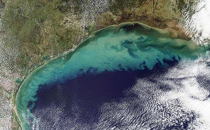"Gulf of Mexico ""Dead Zone"" Larger Than Ever and Growing"