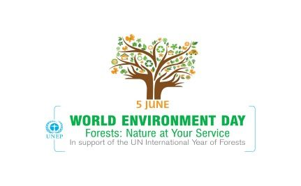 Help Celebrities Plant Trees For World Environment Day!