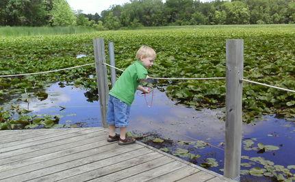 Families Choosing Cheaper, Greener Getaways