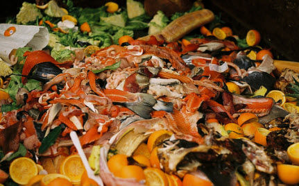 Does Your Annual Food Waste Exceed Your Body Weight?