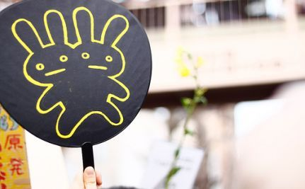 Earless Rabbit A Sign of Fukushima Damage? (VIDEO)
