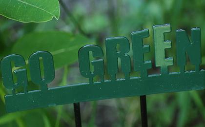 Recent Graduates Head for Green Jobs