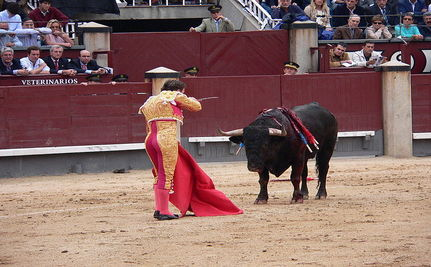 "Bullfighting Declared an ""Art Form"" in Spain"