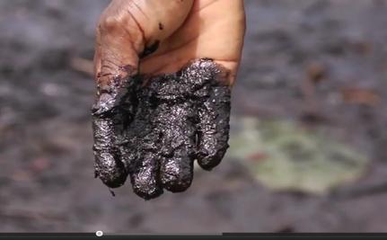 UN: $1 Billion to Clean Oil-Polluted Niger Delta