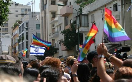 Survey: Israel's Gay and Lesbian Soldiers Harassed