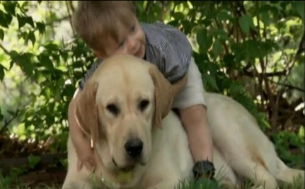 A Boy and His Dog (Video)