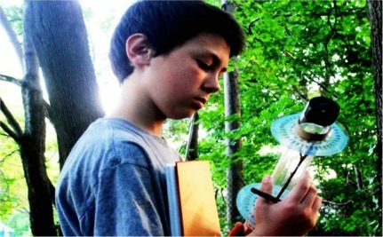 Oak Tree Inspires Teen To Design Super-Efficient Solar Panel