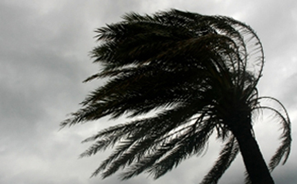 Update: Irene Crashes Into Major East Coast Cities – 9 Deaths Reported