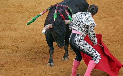 Bullfighting Isn't Culture, It's Cruelty