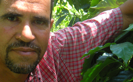 Building a Global Farmer's Market with Liga Masiva
