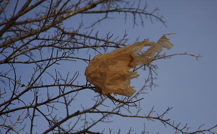 Success! Plastic Bag Maker Ends Lawsuit Against ChicoBag