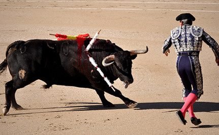 Barcelona Says Adios To Bullfights After 600 Years – VIDEO
