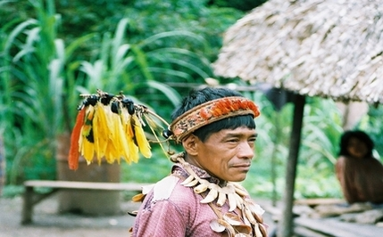14 Shamans Murdered in Peru
