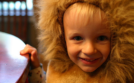 Trick Or Treat for Big Cats
