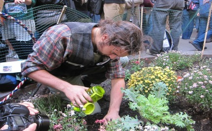 Guerrilla Gardening Project Blooms At Occupy Wall Street
