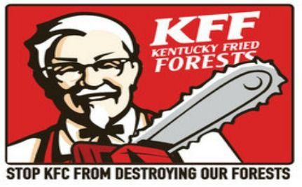 Activists 'Occupy KFC' To Prevent Destruction Of Southern Forests