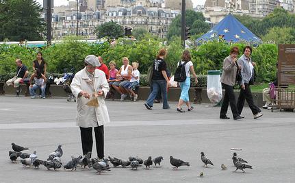 The Guerrilla Pigeon Feeders of Paris