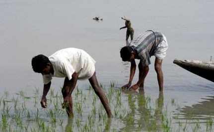 Bangladesh: Climate Change to Increase Hunger and Malnutrition