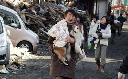 Sheltering Japan's Dogs After Disaster (VIDEO)