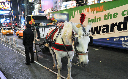Make Horse-Drawn Carriages History in New York City