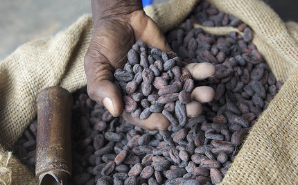 Have a Slavery-Free Holiday: Buy Ethical Chocolate