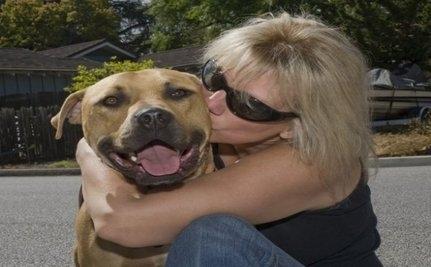 Leo, Former Michael Vick Dog Dies (Slides)
