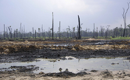 Shell's Rape Of Nigeria Continues: Another Oil Spill