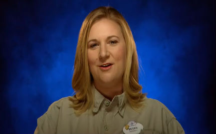 Disney Employees Record It Gets Better VIDEO
