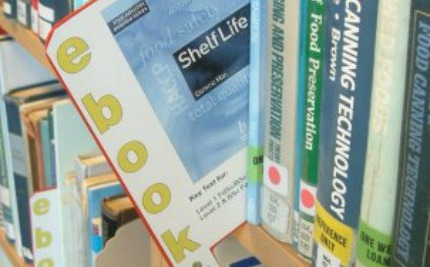 E-book Borrowing: Publishers and Libraries Disagree