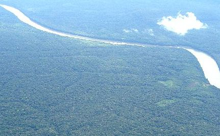 Tipping Point: Amazon Basin Becoming a New Carbon Source?