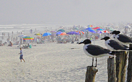 "EPA: It's ""Acceptable"" For 1 in 28 To Get Sick From the Beach"