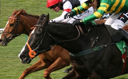 HBO Horseracing Series 'Luck' Not Lucky for Horses