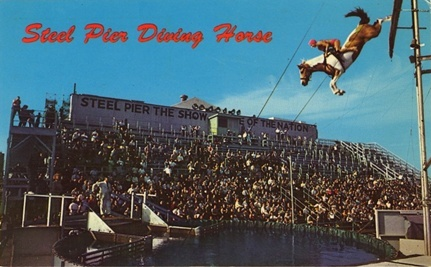 Atlantic City Diving Horse Act Revival Shut Down