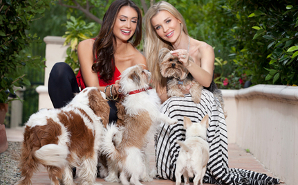 Supermodels And Puppies