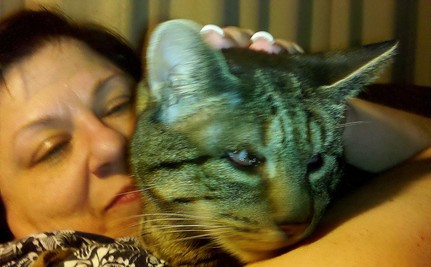 Stray Cat With No Eyes Getting Thinner Every Day Until Hero Rescues Her