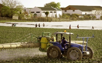 Toxic Pesticide Pulled from US Market