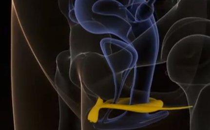 Big boob handjob tube