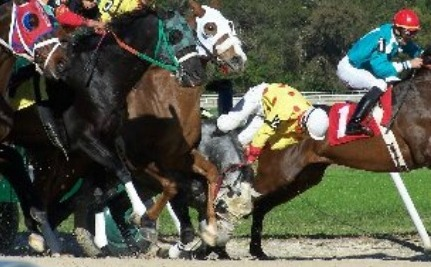 Drugged Up Horses Race To Their Deaths: Take Action
