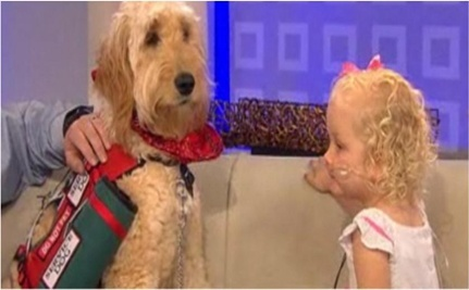 Young Girl with Rare Disease Gets Service Dog