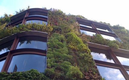 Biophilic Cities: Nature Meets Urban