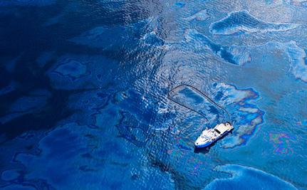 Oil Dispersants Shouldn�t Harm Endangered Species