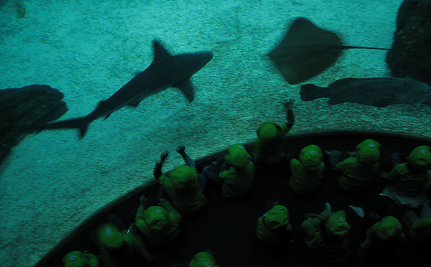 "Oceanarium Says Autistic Kids ""Disappoint"" Other Visitors"