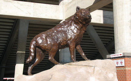 Who's Killing The Family Of NC State University's Mascot?