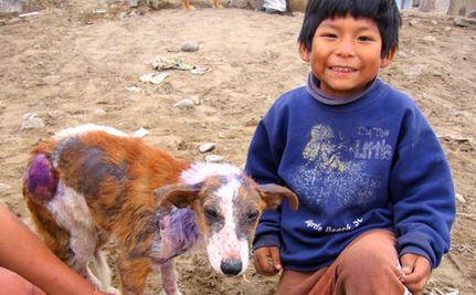Deaf Boy in Shanty Town Rescues Burned Homeless Dog