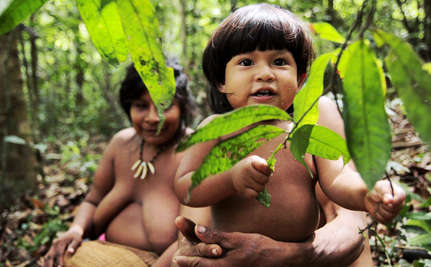 Brazilian Tribe On Brink of Extinction